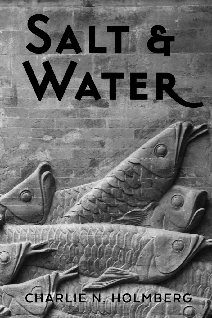 "Budget cover design: Sandstone fish and the words ""Salt & Water"""